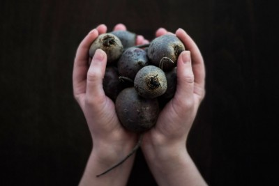 beetroot_hands_small